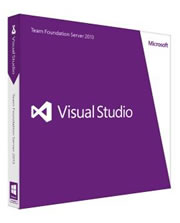 Visual Studio 2013 (TFS)
