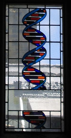 Ventana de Francis Crick