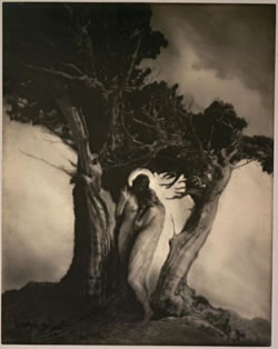 'The heart of storm' de Anne W. Brigman (1912)