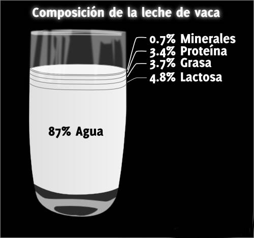Composición de la leche de vaca